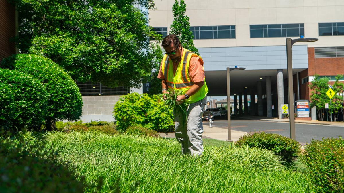 landscape professional maintains commercial property