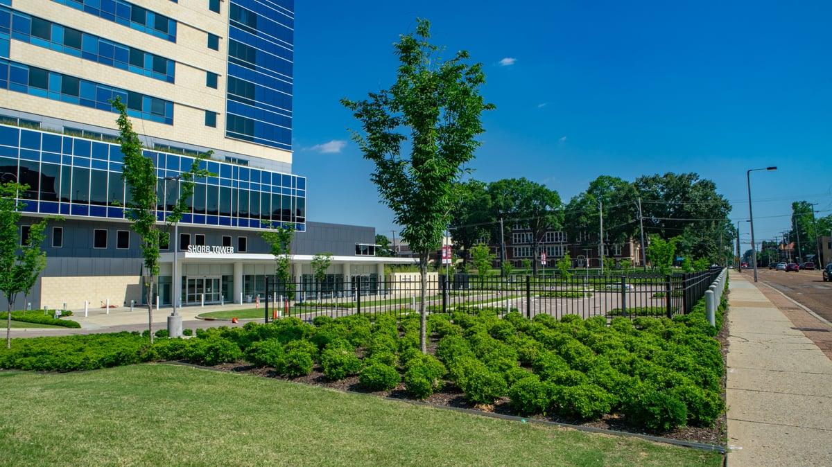 Methodist University Hospital Commercial Landscaping