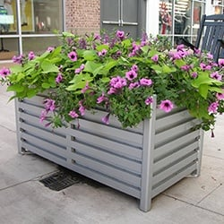 container garden at commercial property landscape