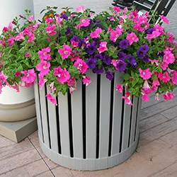 Planting container at shopping center