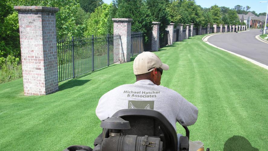 A Michael Hatcher and Associates Lawn Care Expert