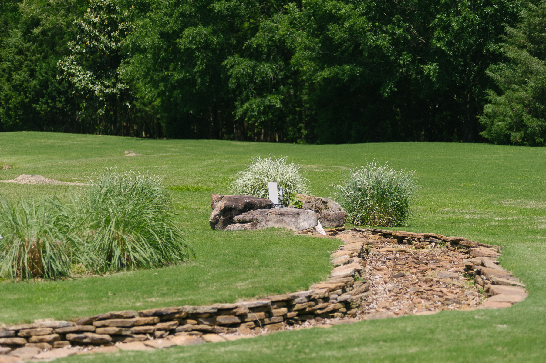 Dry creek bed in Memphis