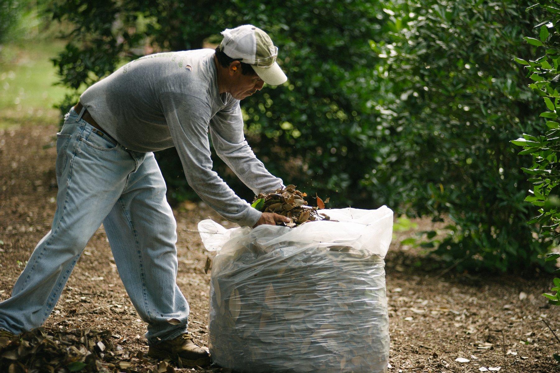 commercial landscaping leaf removal