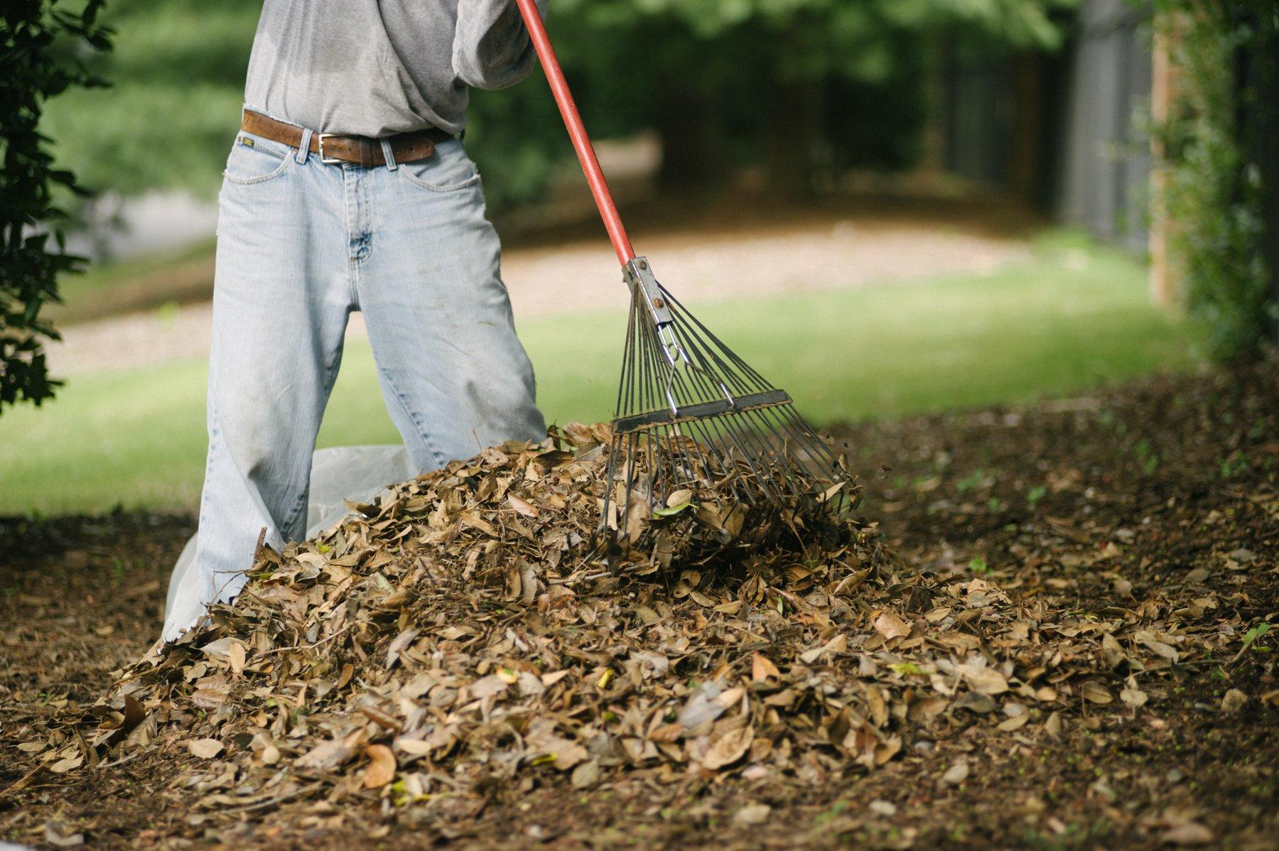 commercial landscaping maintenance leaf removal