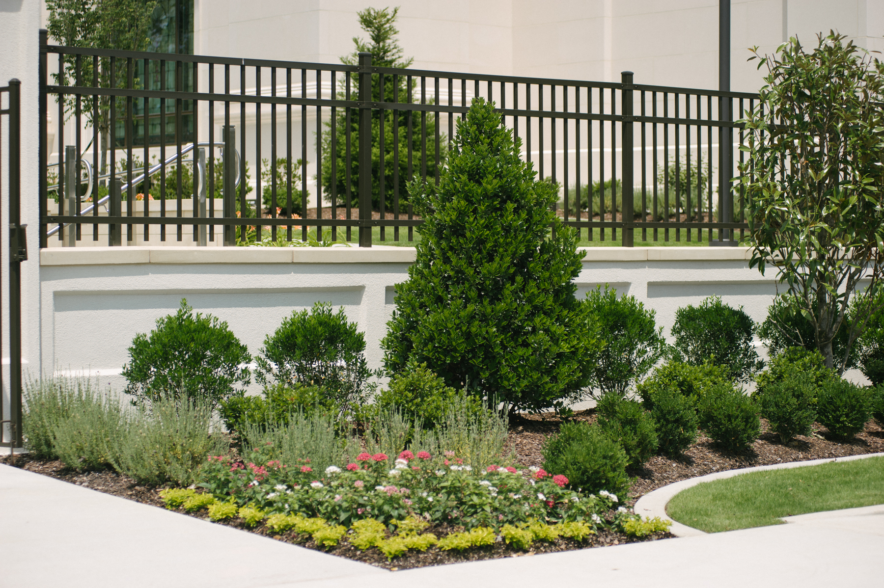 commercial landscaping walkway with plantings and shrubs