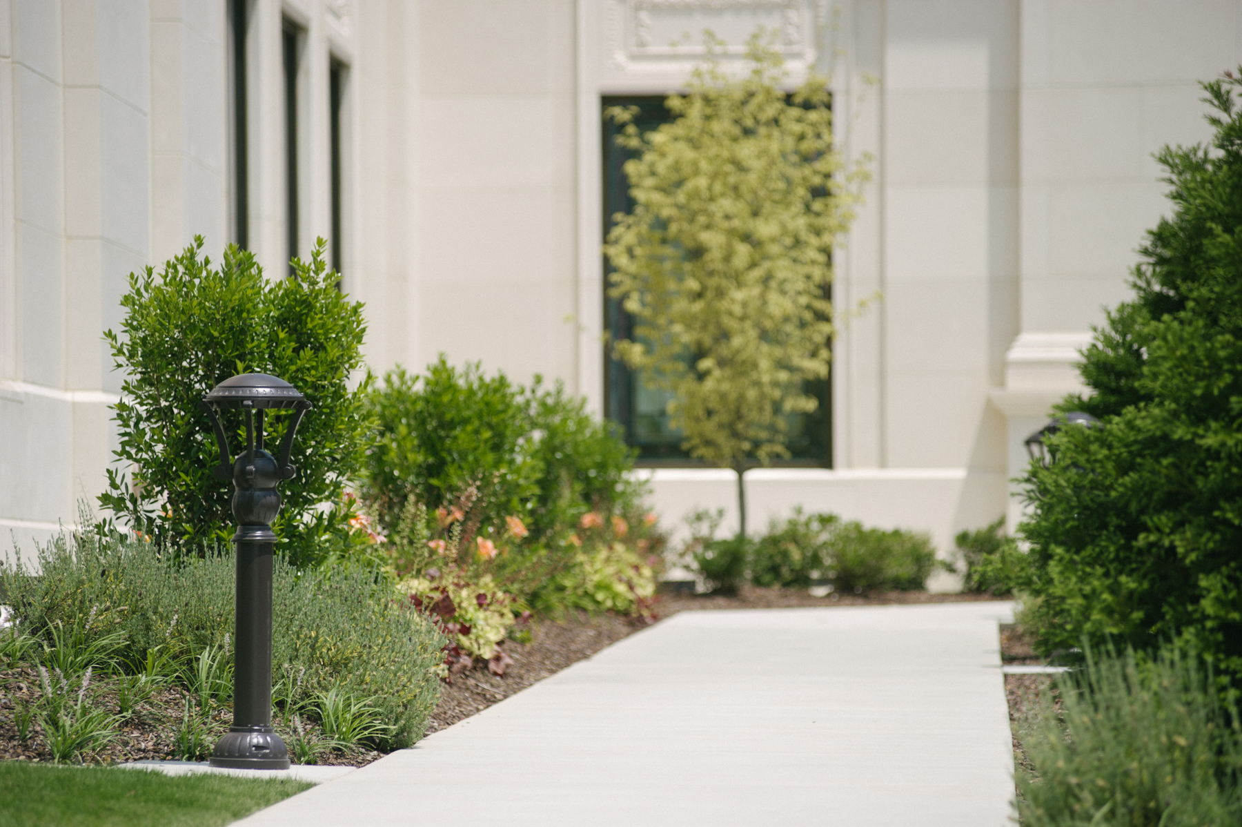 commercial landscape plants on walkway designed for curb appeal