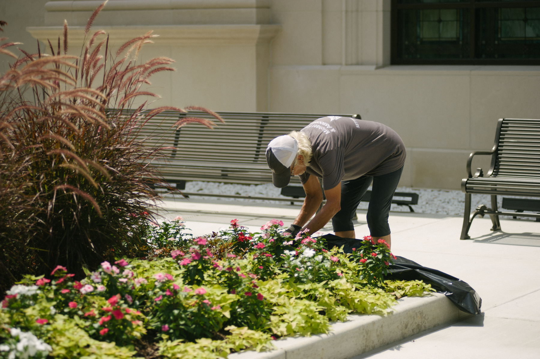 Commercial landscaping enhancements