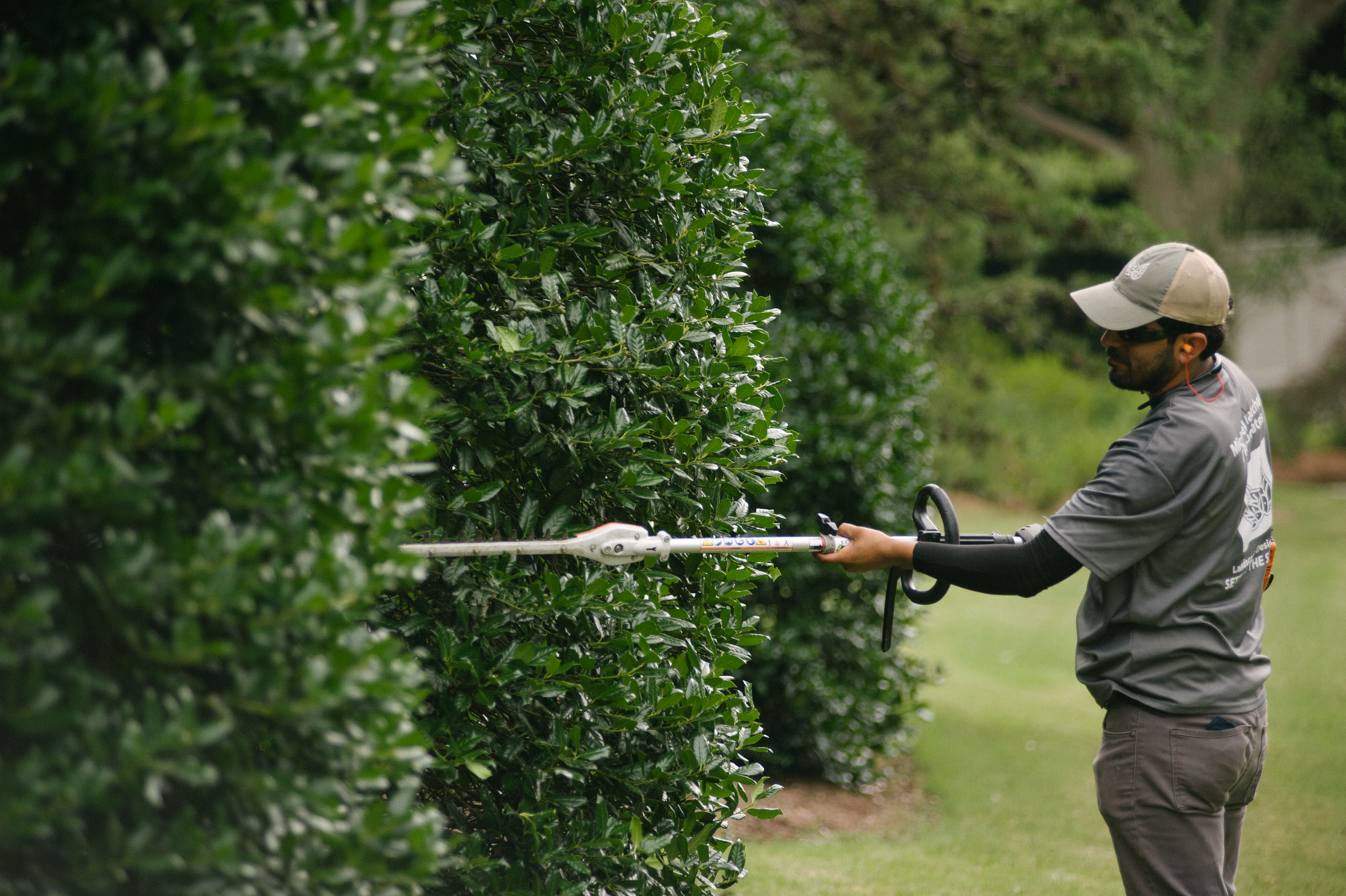 commercial landscape employee trimming shrubs