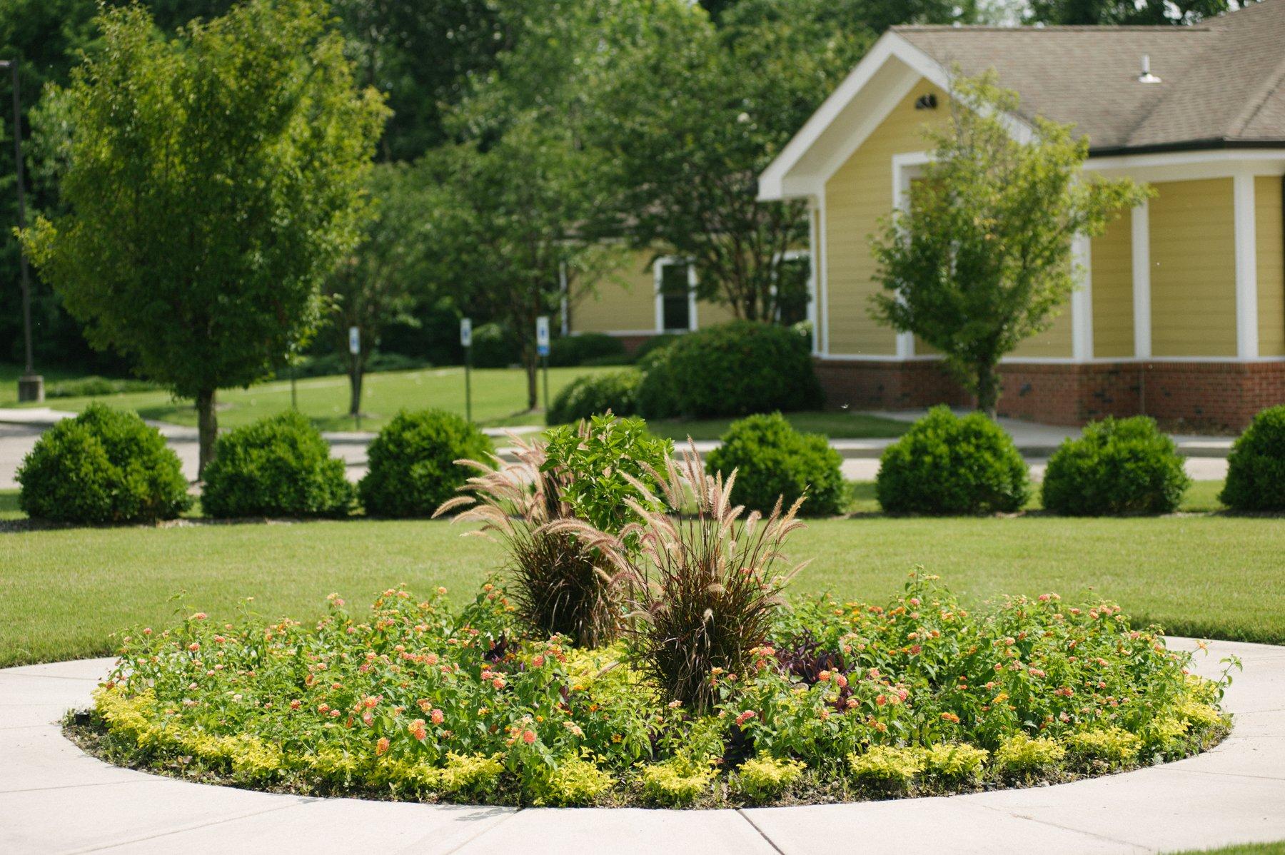 plants around commercial landscape walkway