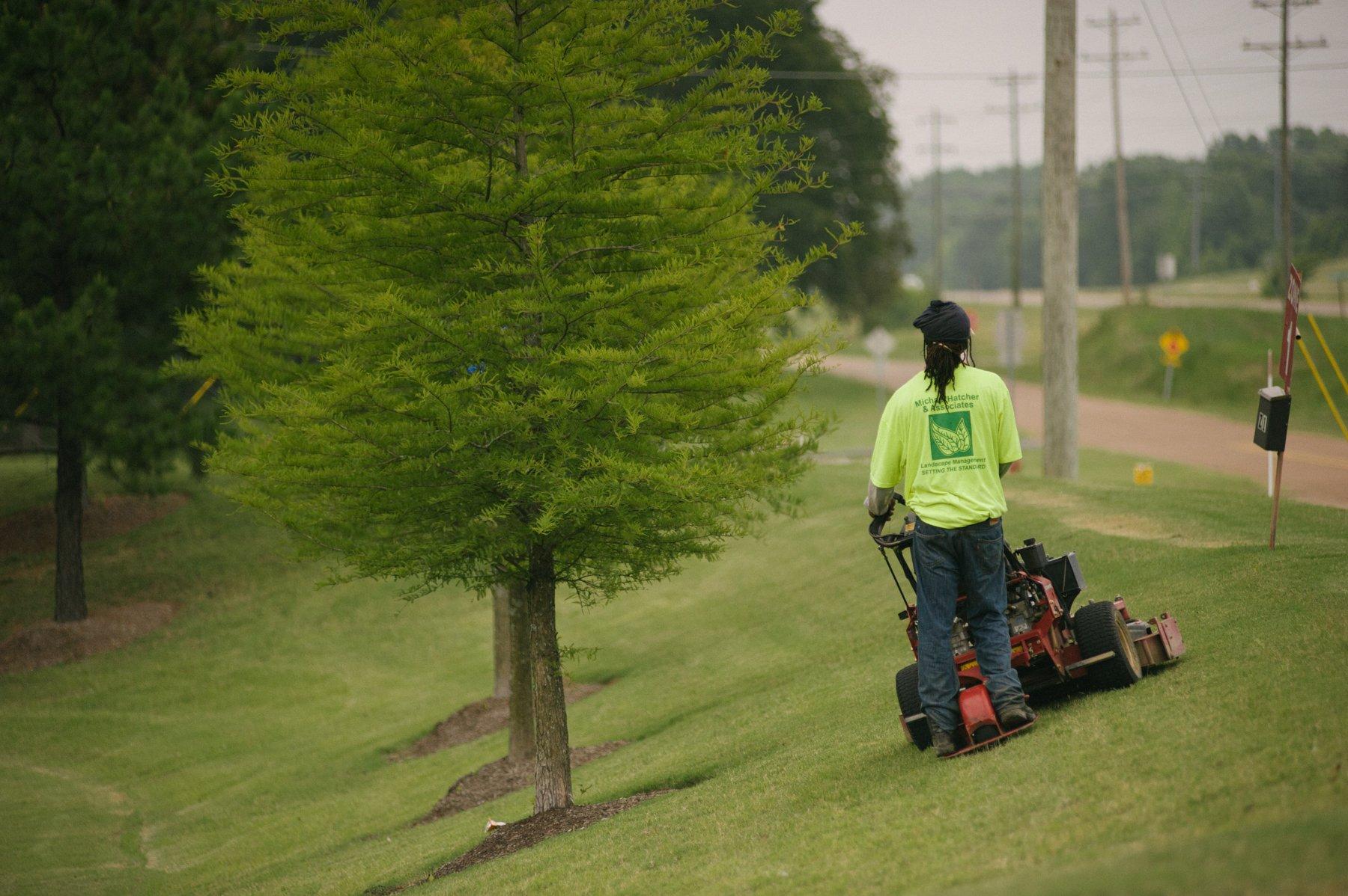 commercial landscape technician mowing