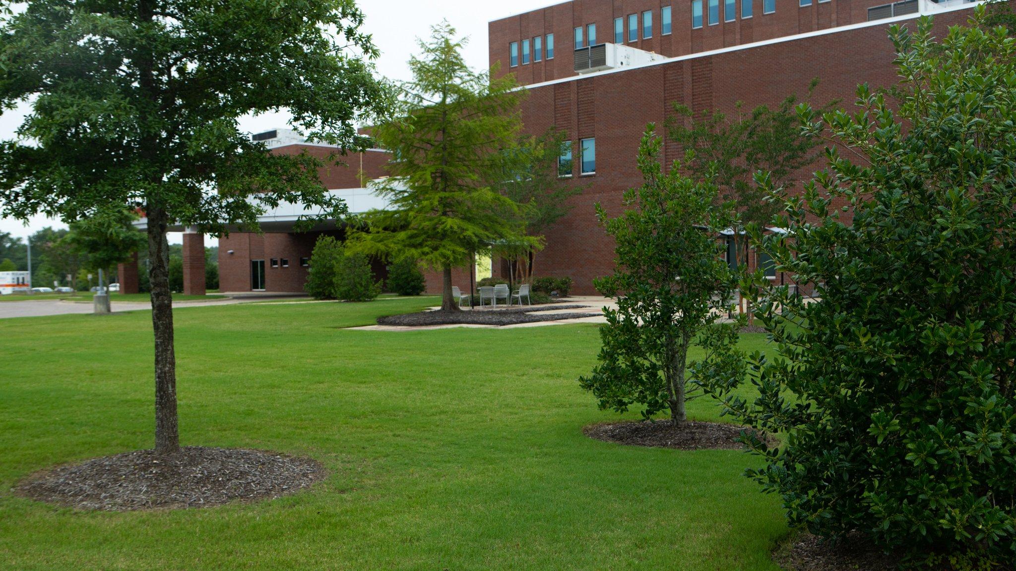 Methodist Olive Branch Hospital landscape and trees