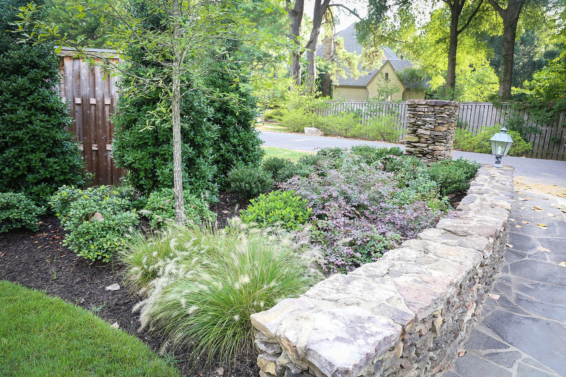 Native plants in mid-south