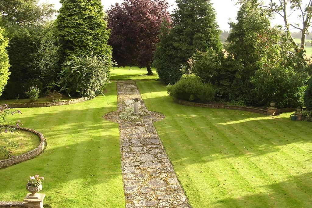 Amazing Lawn Care