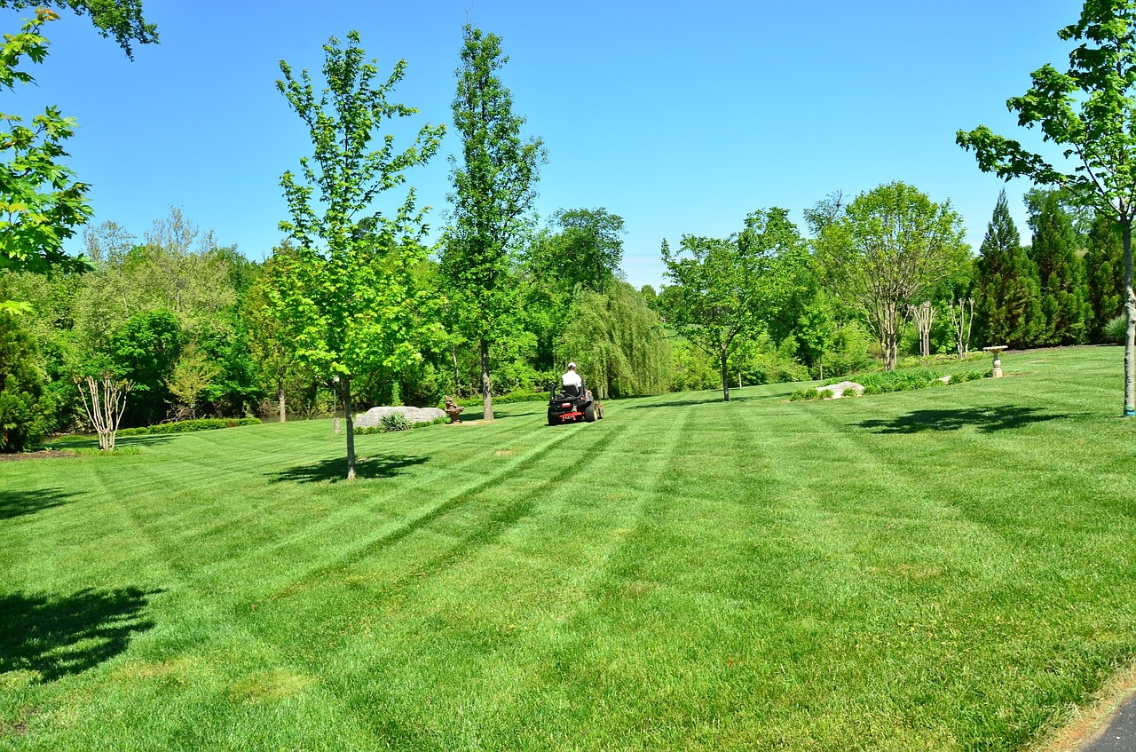 Lawn care company employee on a lawn mower