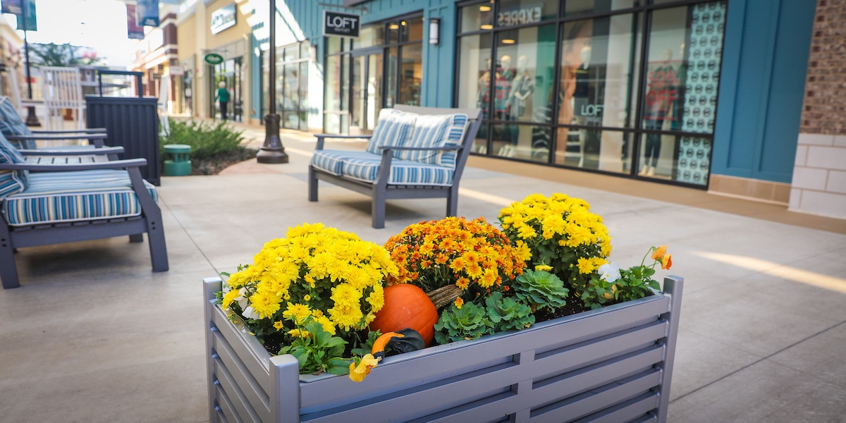 Shopping center landscaping flowers