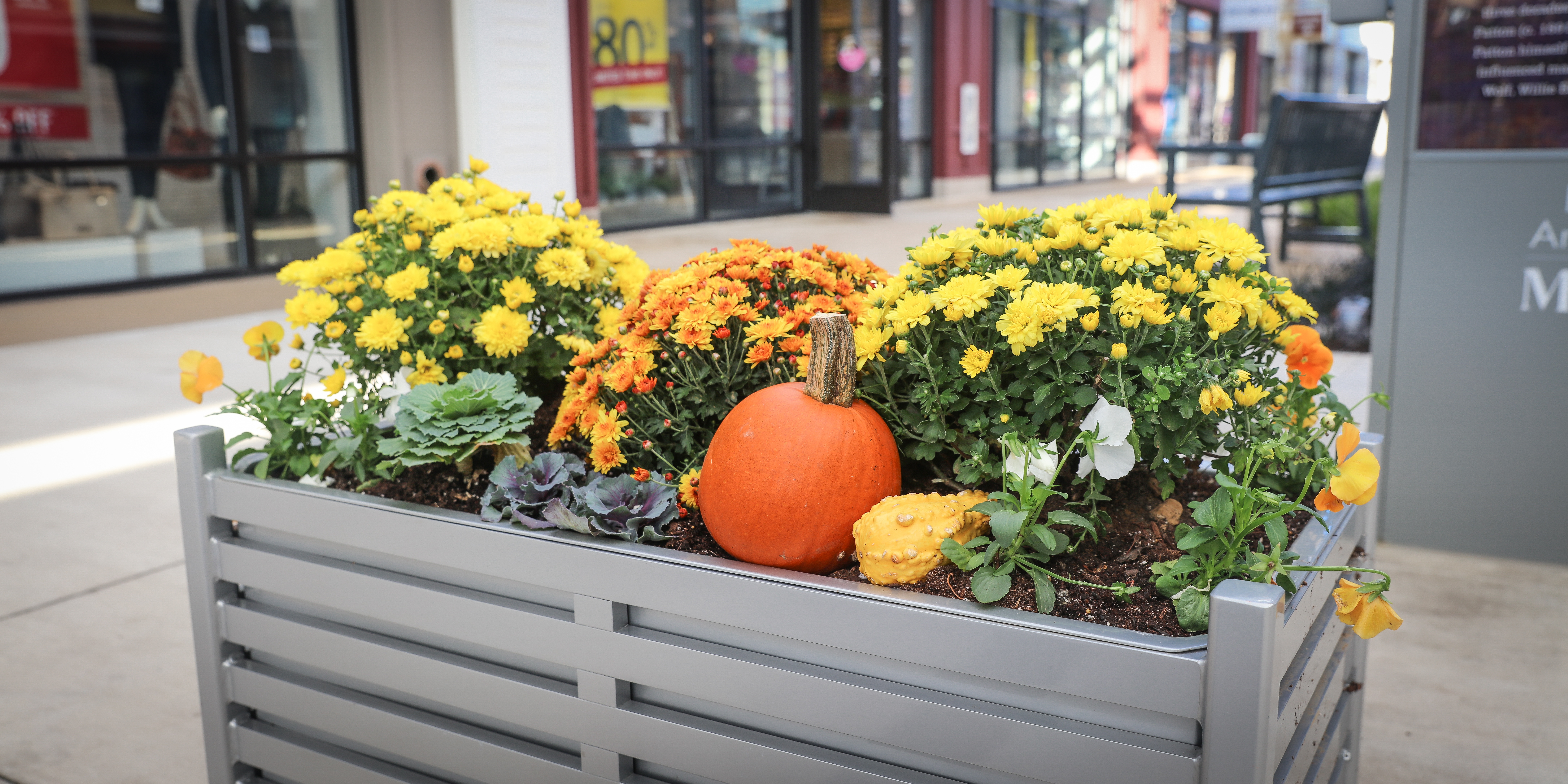 Fall planting container at shopping center
