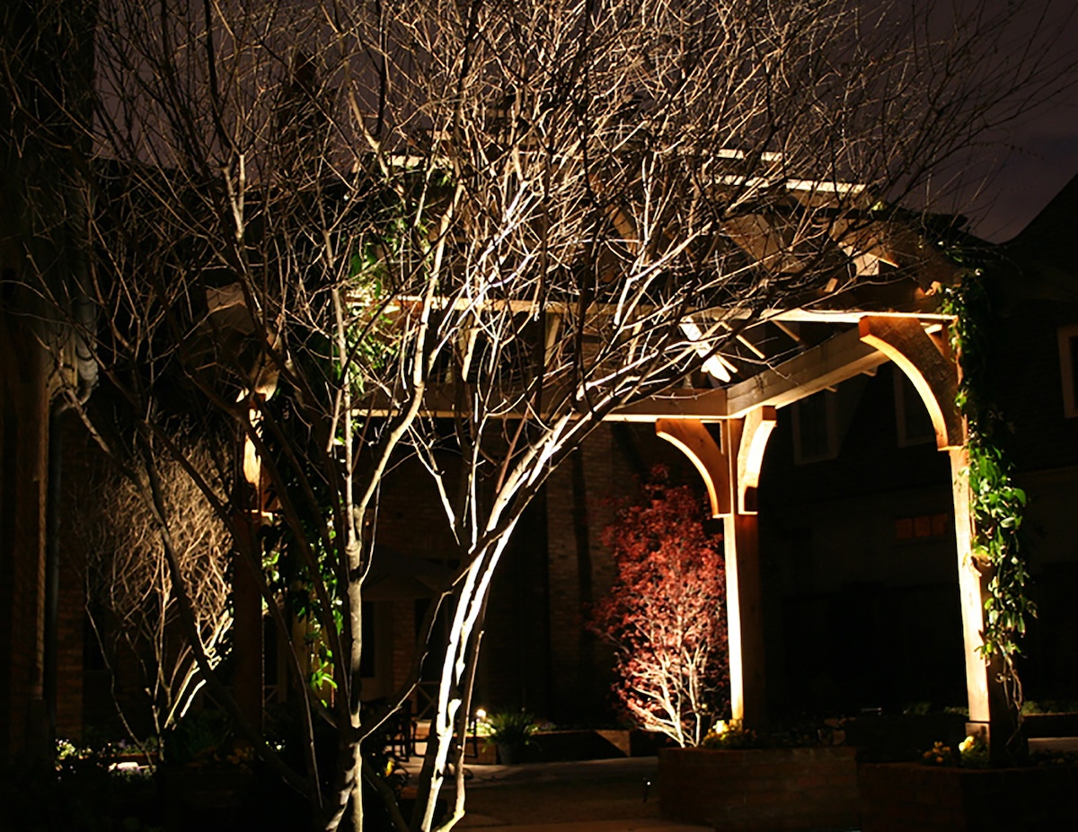 tree landscape lighting