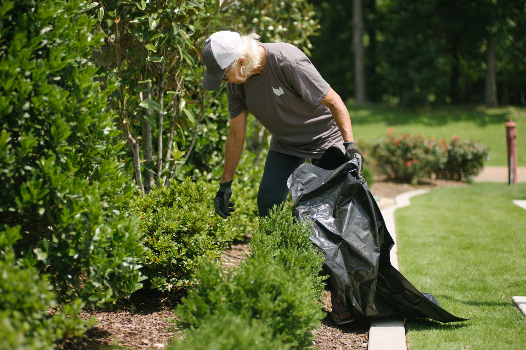 commercial landscape technician weeding