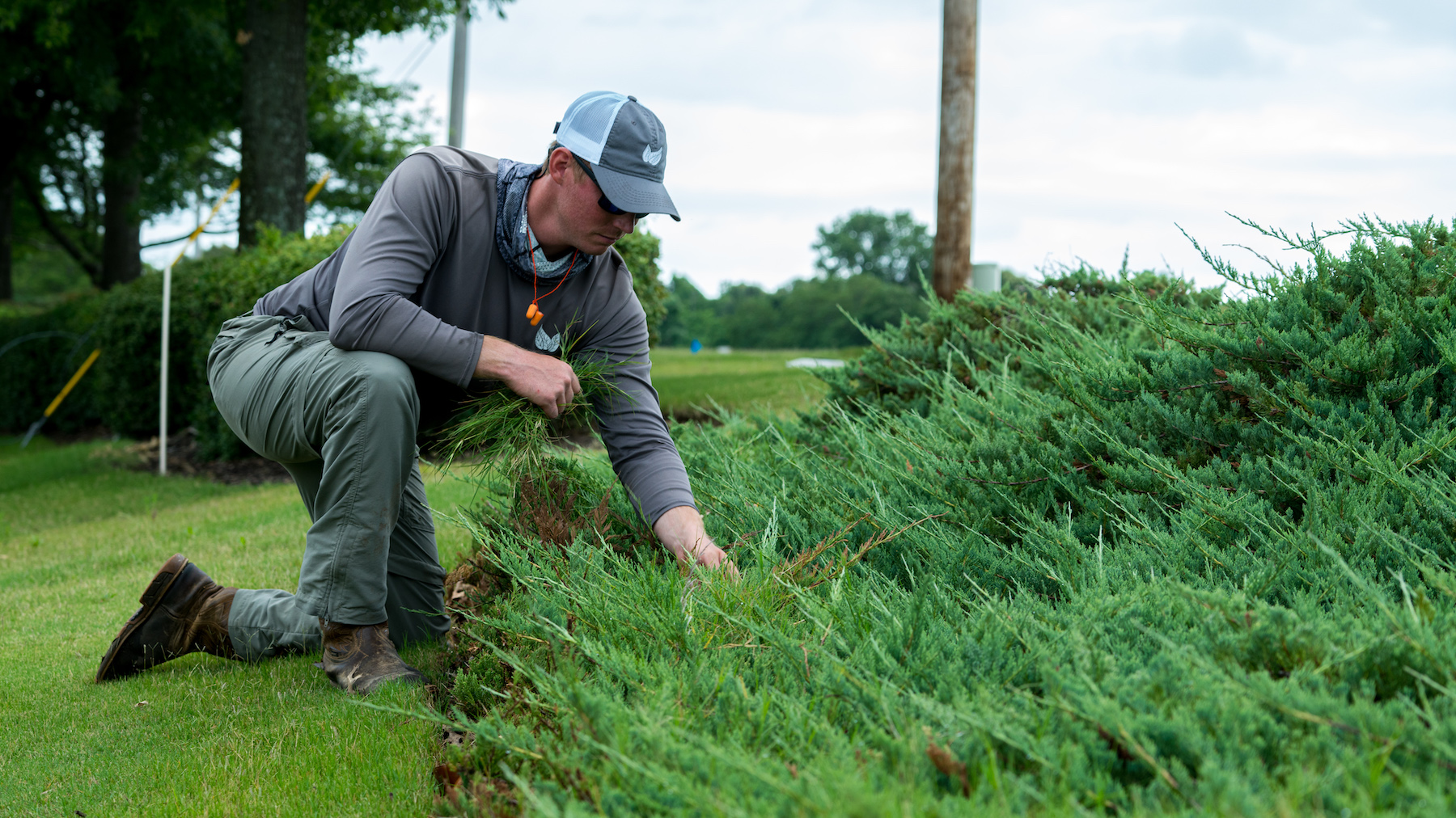 Commercial landscaping company technician