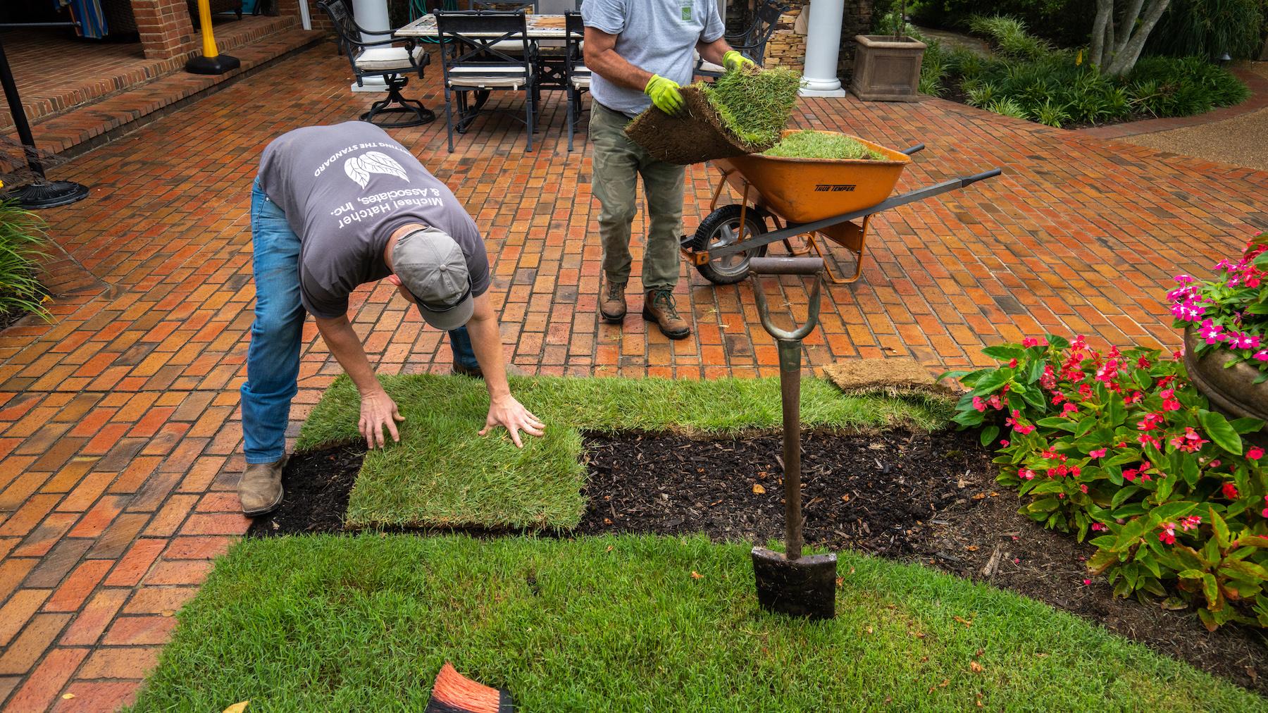 Lawn care technician installing sod